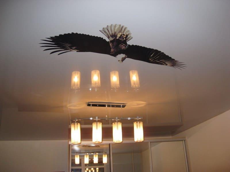 Натяжной потолок с фотопечатью Птица