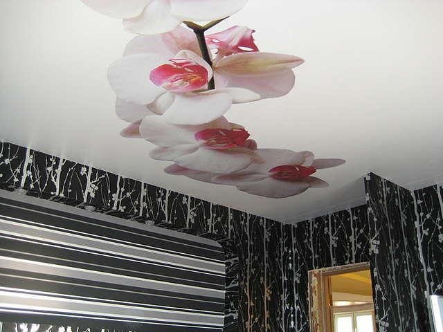 Натяжной потолок с фотопечатью Цветы