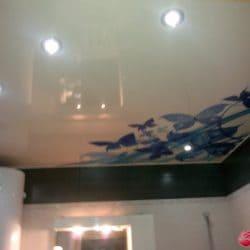 Глянцевый натяжной потолок с фотопечатью Бабочки - галерея Строй Комфорт