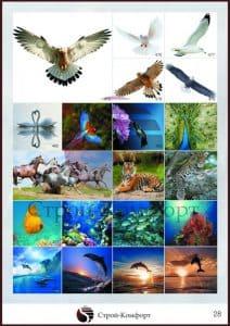 Каталог фотопечати Строй Комфорт 28 страница