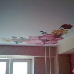 Матовый натяжной потолок с фотопечатью Цветы - галерея работ Строй Комфорт