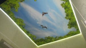 Натяжной потолок с фотопечатью Птицы