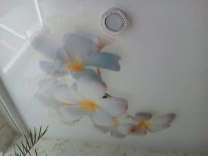 Глянцевый потолок с фотопечатью цветы - галерея Строй Комфорт